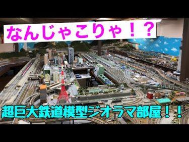 【なんじゃこりゃ❗️❓】超巨大鉄道模型ジオラマ部屋に行ってきた❗️鉄道模型16番(HO)ゲージ Nゲージ #純鉄ライン