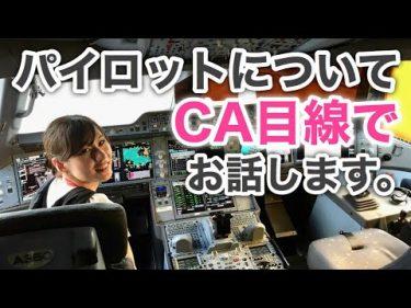 【CAは見た】パイロットの素顔と仕事の舞台裏「本音で語ります」 #【元CA主婦Tuber】あみちゃろ